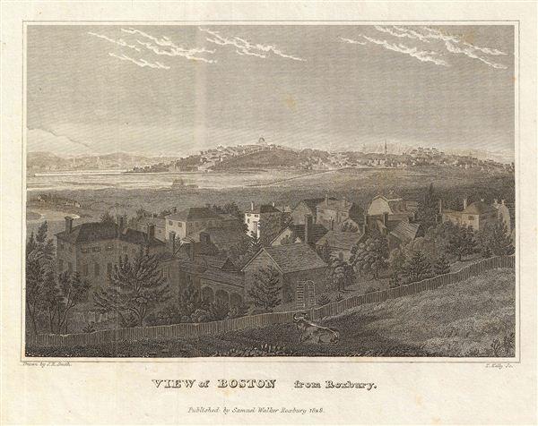View of Boston from Roxbury. - Main View