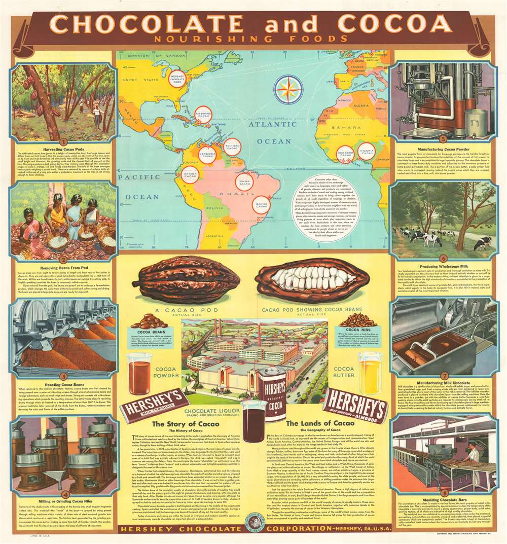 Chocolate and Cocoa Nourishing Foods.