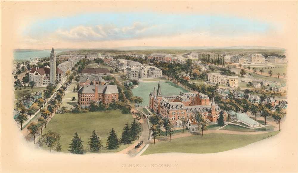 Cornell University. - Main View