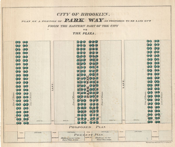 City of Brooklyn.  Plan of a Portion of Park Way as Proposed to be Laid out From the Eastern Part of the City to The Plaza. - Main View