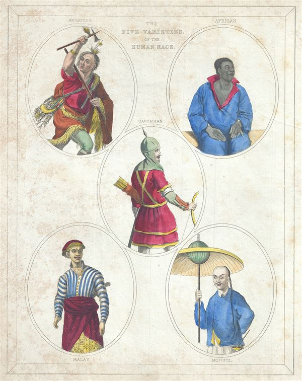 The Five Varieties of the Human Race. - Main View