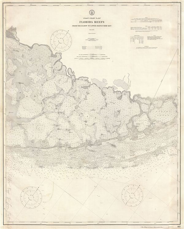 Coast Chart No. 167 Florida Reefs From the Elbow to Lower Matecumbe Key. - Main View