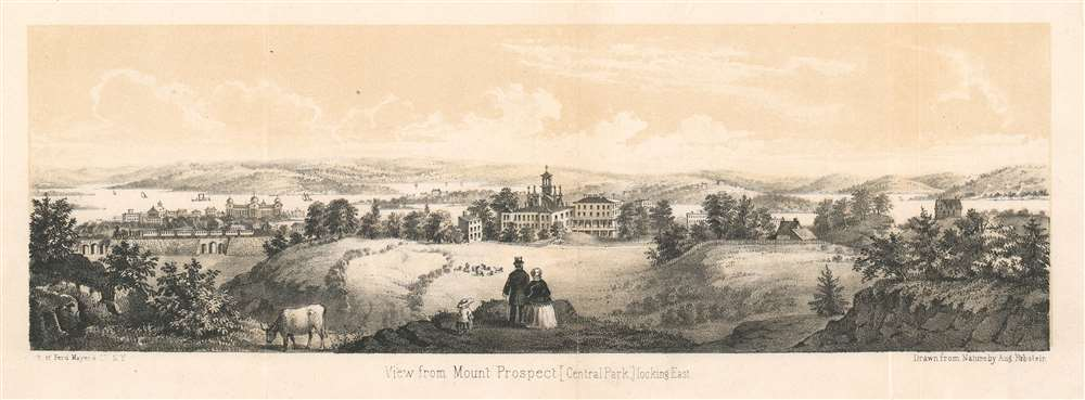 View from Mount Prospect [Central Park], Looking East. - Main View