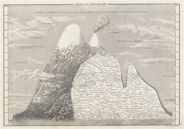 Physical Geography.  Humboldt's Distribution of Plants in Equinoctial America, According to Elevation Above the Level of the Sea. - Main View