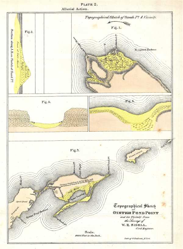 Topographical Sketch of Oyster Pond Point and the Vicinity from the Surveys of W. H. Sidell.