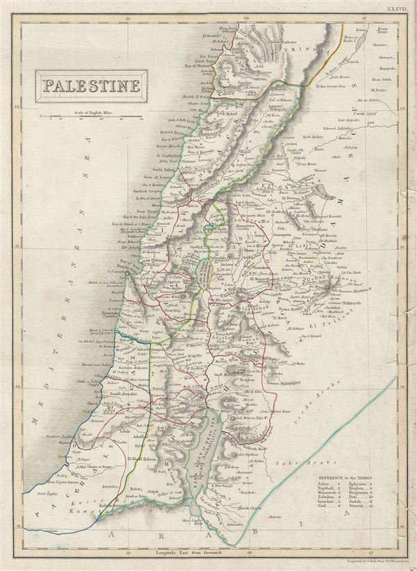 Palestine. - Main View
