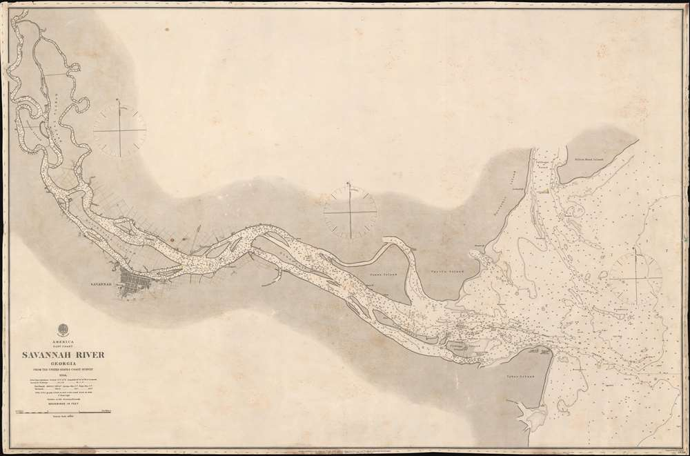Savannah River Georgia From the United States Coast Survey 1855. - Main View