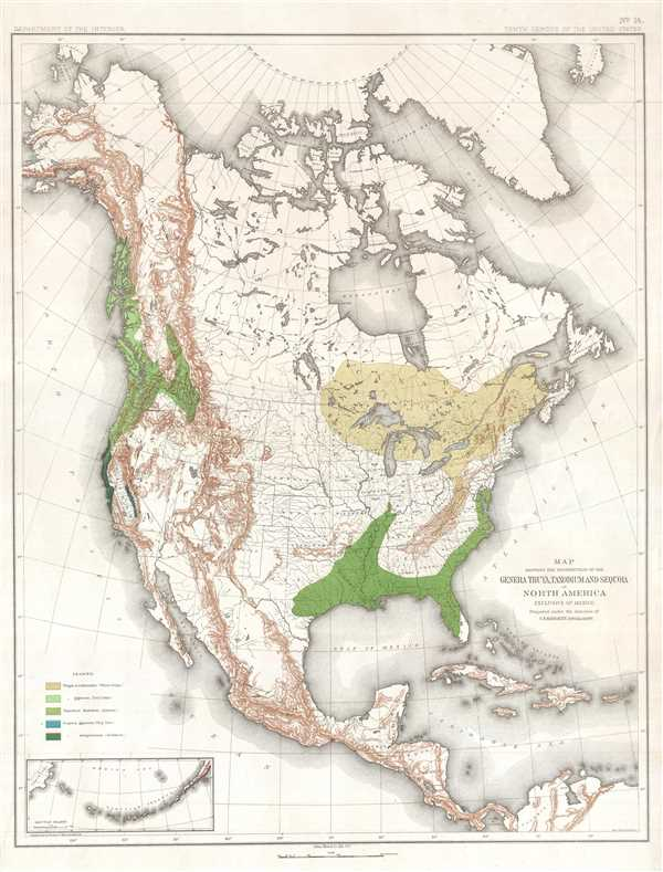 Map Showing the Distribution of the Genera Thuya, Taxodium and Sequoia in North America Exclusive of Mexico.