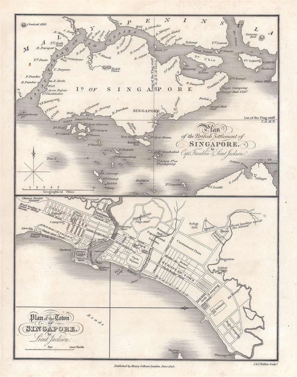 Plan of the Town of Singapore by Lieut. Jackson.  / Plan of the British Settlement of Singapore by Capt. Franklin and Lieut. Jackson. - Main View