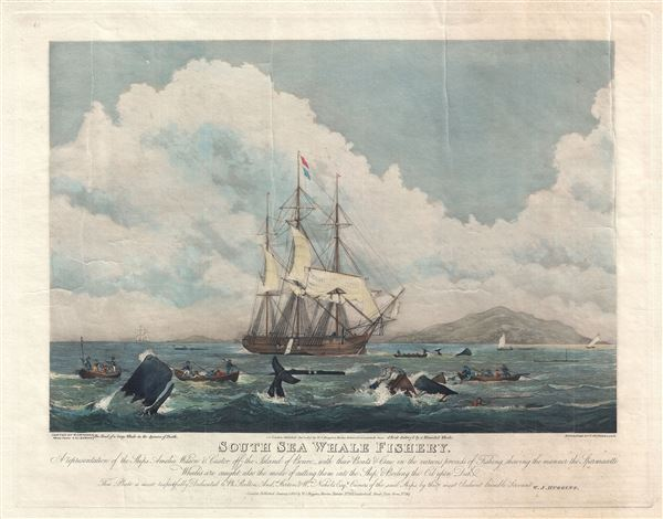 South Sea Whale Fishery.  A representation of the Ships Amelia Wilsona and Castor off the Island of Bouro with the Boats and Crew in the various process of Fishing, shewing the manner the Spermacetti Whales are caught also the mode of cutting them into to Ship, and Boiling the Oil upon the Deck.