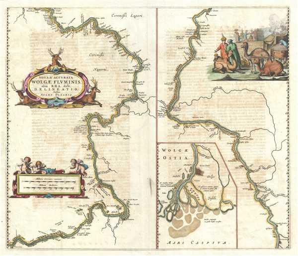 Nova & Accurata Wolgae Fluminis, olim Rha dicti, Delineatio. - Main View