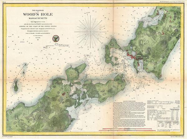 The Harbor of Wood's Hole Massachusetts. - Main View