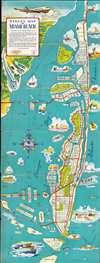 Street Map of Miami Beach. - Main View Thumbnail